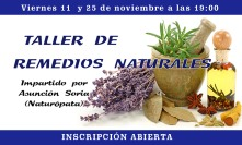 taller-remedios